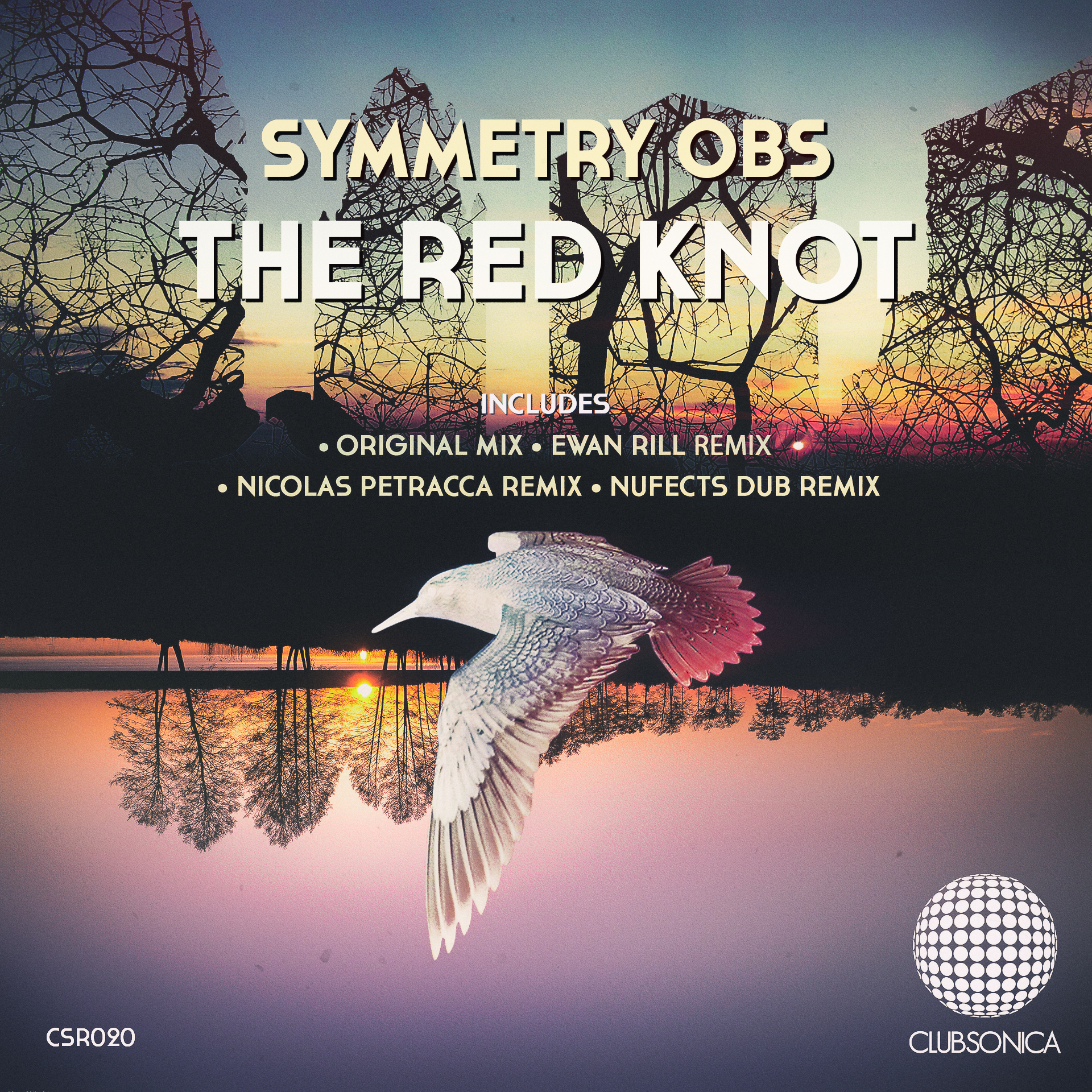 Symmetry Obs - The Red Knot