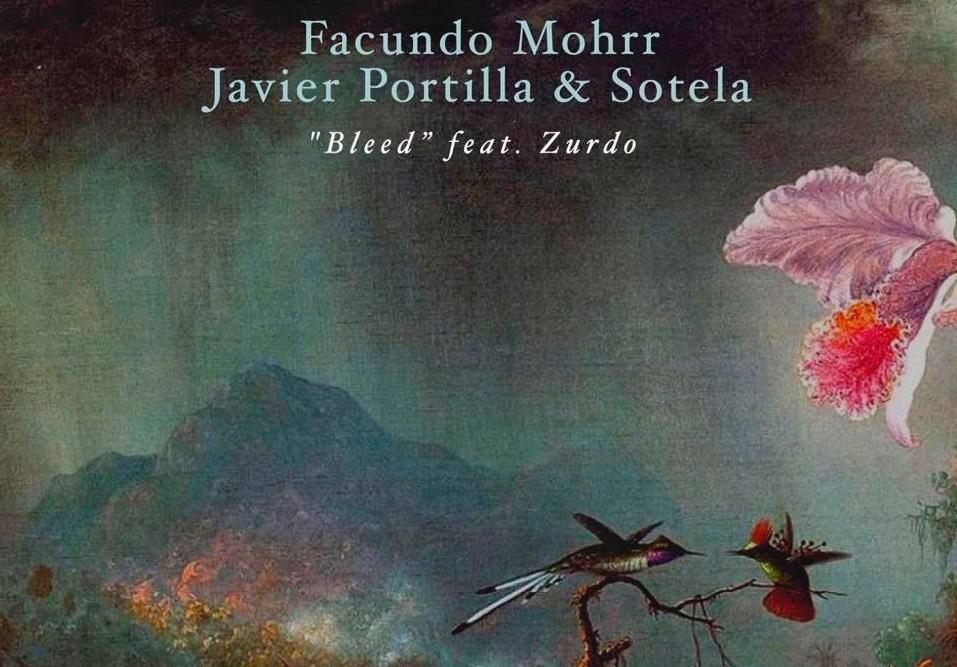 Facundo Mohrr Javier Portilla Sotela Bleed Feat Zurdo Natura Sonoris